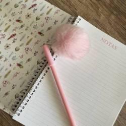 Agenda Atrapa tus sueños